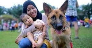 Islam about dogs