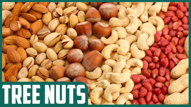 Top 7 food allergies even common people are affected.
